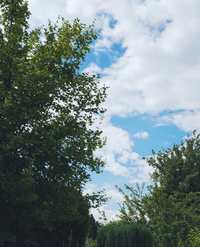 12von12: Sonnenschein am Wolken Tag