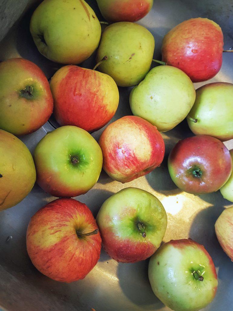 01-Äpfel-Taufe-Wochenende-in-Bildern