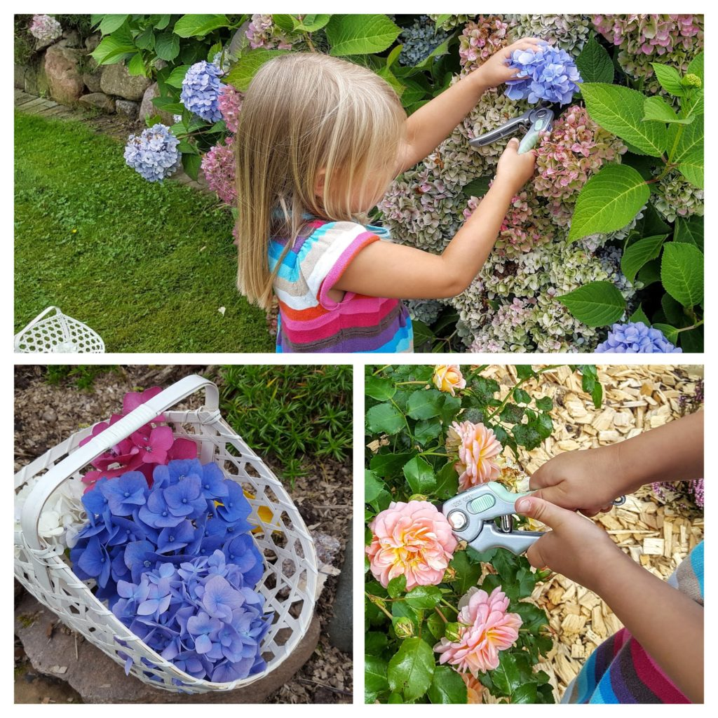 Blumen pflücken Was wollen wir machen Frau Piefke schreibt
