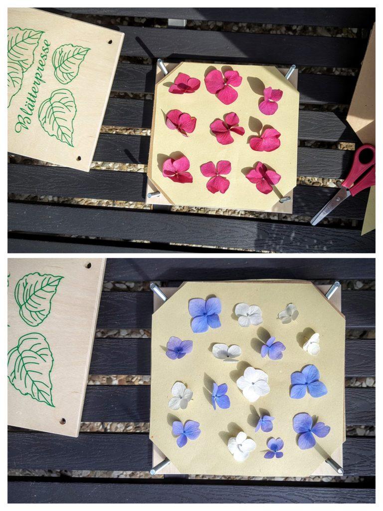 Blumen stapeln Was wollen wir machen Frau Piefke schreibt