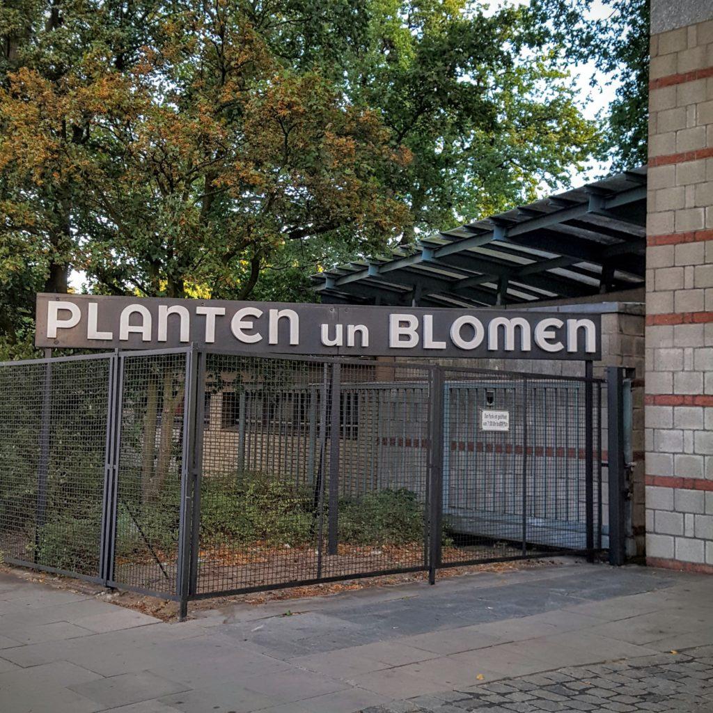 17-plantenunblomen-wochenende-attachment-parenting-kongress-frau-piefke-schreibt