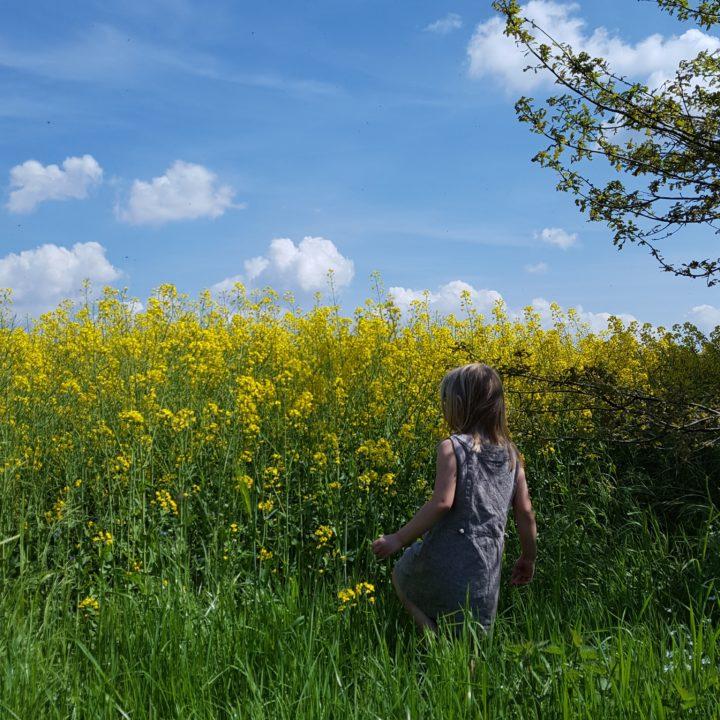 14 Wochenende in Bildern Frau Piefke schreibt